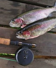 early-spring-trout-fishing-tips