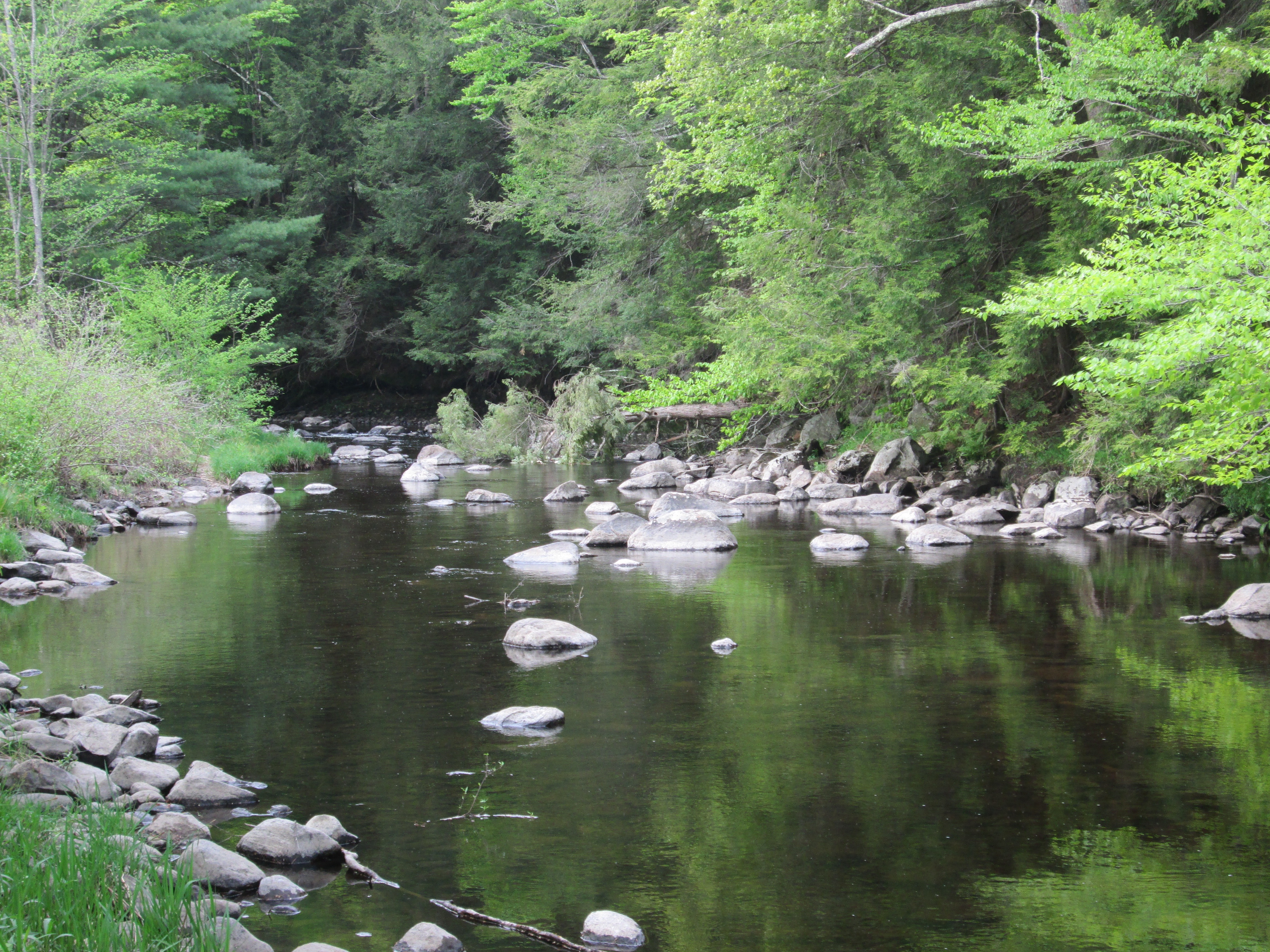 Fishing the farmington river in otis massachusetts for Farmington river fishing